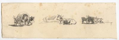 Roman Kochanowski, page from a sketch book with a team of oxen, one ox lying down and one ox on the wagon, pencil on paper, 7.3 x 23 cm