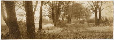 Roman Kochanowski, Landscape, photo, 8.2 x 32.2 cm (template for a painting)