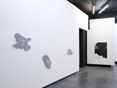 Agata Madejska, Installation view, Technocomplex, Parrotta Contemporary Art, Stuttgart, 2017.