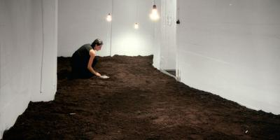 SILVER SALT, 1999. Analogue interactive Installation.